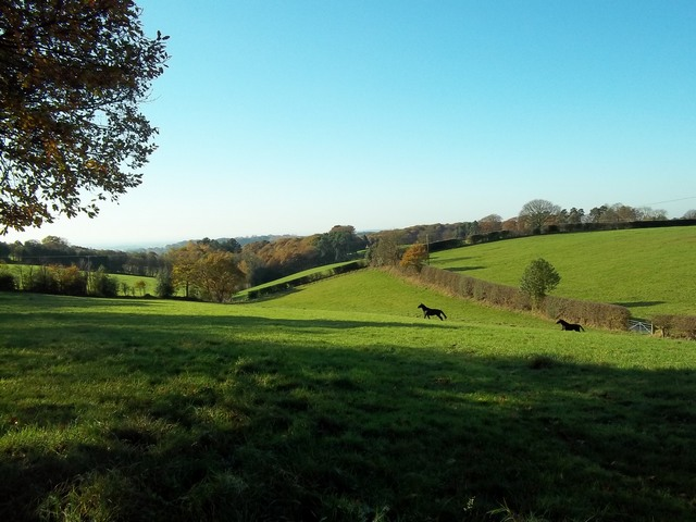 November 2011 Walk - down to Idlerocks